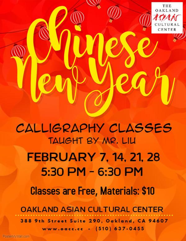 chinese new year mr. liu classes 2
